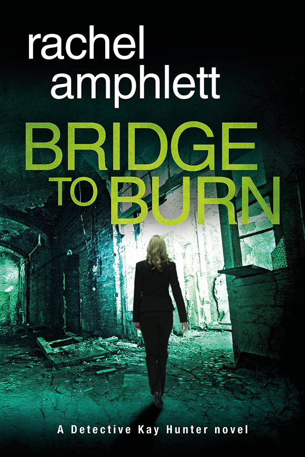 Bridge to Burn Cover MEDIUM WEB