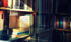 Image shows sunlight on books on a bookshelf in a shop