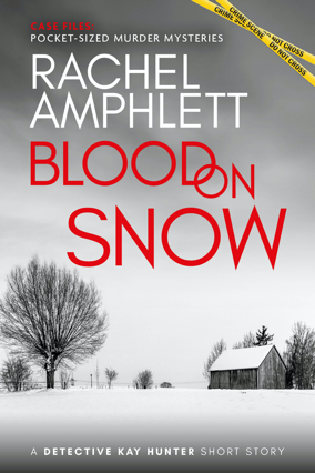 Cover for Blood on Snow 284x426 pixels