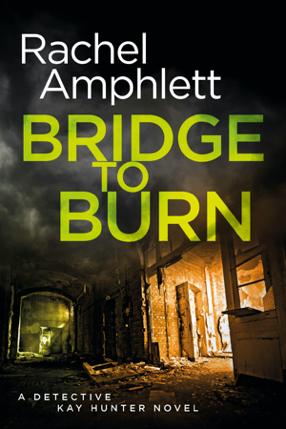 Cover image for Bridge to Burn 286x429 pixels