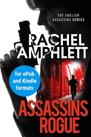 Image shows book cover for Assassins Rogue for ePub and Kindle formats