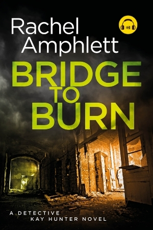 Image shows book cover for Bridge to Burn with an audiobook icon