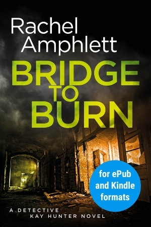 Image shows book cover for Bridge to Burn for ePub and Kindle formats